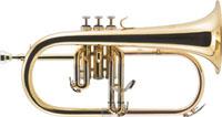 J.MICHAEL FG-500