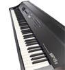 Коллекция Цифровые пианино MP - 4 наименований стоимостью от 88820 до 189900 рублей. Концертные цифровые пианино KAWAI серии MP отличный инструмент с захватывающим звучанием, создающий только положительные эмоции во время игры и помогающий воплощать в жизнь Ваши творческие замыслы. KAWAI MP8, KAWAI MP5, KAWAI MP4 содержитат много полезных усовершенствований, которые будут очень полезны во время концертов, множество эффектов, хорошая полифония, механика клавиш Advanced Hammer Action IV.