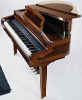 Galileo Concerto HG Mahogany Decor