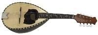 GEWA Round mandolin